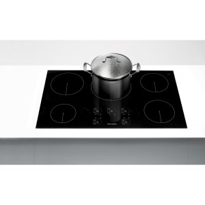 Fisher Paykel CI365DTB1withpot