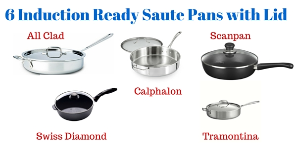 6sautepaninduction